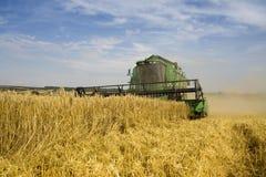 зернокомбайн земледелия стоковые изображения