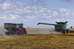 Зернокомбайн тележки и трактора зерна причаливая стоковое изображение