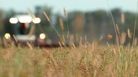 Зернокомбайн травы поля на заднем плане жать акции видеоматериалы