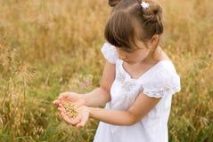 зерно девушки Стоковое фото RF