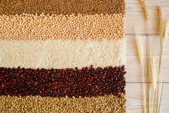 Зерно и фасоли на белой деревянной предпосылке Взгляд сверху Стоковая Фотография