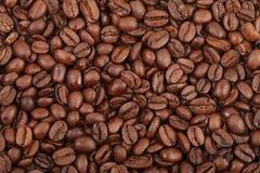 зерно кофе Стоковые Фотографии RF