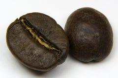 Зерно кофе 2 Стоковая Фотография RF