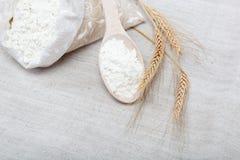 Зерно муки и пшеницы. Стоковые Изображения