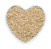 Зерно пшеницы в сердце сформировало блюдо фарфора изолированное на белом bac стоковые изображения