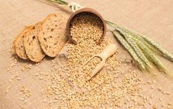 Зерно пшеницы на конце холста вверх Стоковое Изображение RF