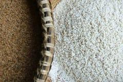 Зерно риса стоковое фото rf