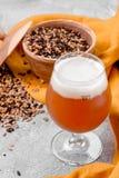 Зерно солода и стекло пива Смешанные разнообразия malted зерна на серой предпосылке Конец-вверх стоковая фотография rf
