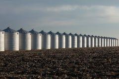 зерно ящиков Стоковое Изображение
