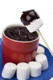 Зефир и шоколад стоковое фото rf