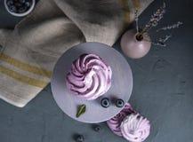 Зефир лаванды очень вкусный с голубиками на конце фиолетовой деревянн стоковое фото