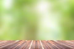 Зеленая абстрактная предпосылка природы нерезкости Стоковые Изображения