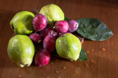 Зеленая айва, Италия, apulia Стоковая Фотография RF