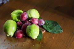 Зеленая айва, Италия, apulia стоковое фото