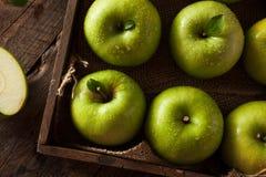 Зеленая бабушка Смит Яблоко Стоковые Изображения
