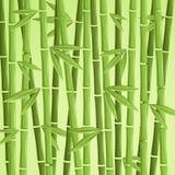 Зеленая бамбуковая иллюстрация вектора Стоковое Изображение