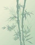 Зеленая бамбуковая предпосылка иллюстрация вектора