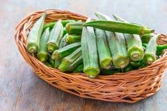 Зеленая бамия стоковые изображения rf
