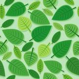 Зеленая безшовная картина Стоковое Изображение