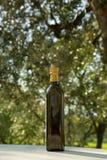 Зеленая бутылка холода - отжатое оливковое масло с запачканным европейцем Oli стоковое изображение