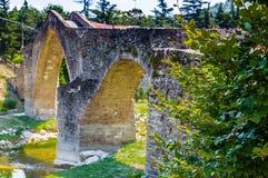 Зеленая вегетация на средневековом мосте горба в Италии Стоковое Изображение
