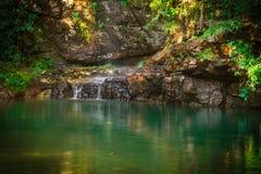 зеленая вода Стоковая Фотография