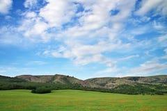 зеленая гора лужка Стоковые Фото