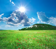 зеленая гора лужка Стоковое Изображение