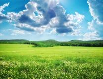 зеленая гора лужка Стоковые Изображения