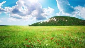 зеленая гора лужка Стоковая Фотография RF