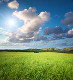 зеленая гора лужка Стоковое фото RF