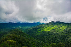Зеленая гора Стоковое фото RF