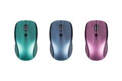 Зеленая, голубая и розовая мышь Стоковые Изображения RF
