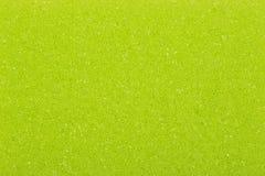 Зеленая губка, предпосылка или текстура Стоковая Фотография