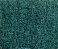 Зеленая губка scrub текстура Стоковые Изображения