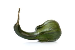 Зеленая декоративная тыква Стоковые Фотографии RF