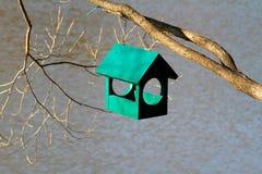 Зеленая деревянная смертная казнь через повешение birdhouse на ветви дерева Стоковые Фото