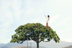 Зеленая жизнь eco Мультимедиа Мультимедиа Стоковые Фотографии RF