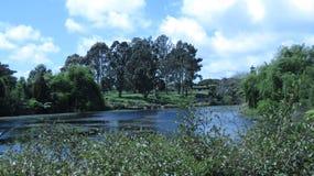 Зеленая земля красоты стоковое изображение
