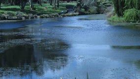 Зеленая земля красоты Стоковые Фото