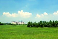 зеленая земля Стоковая Фотография