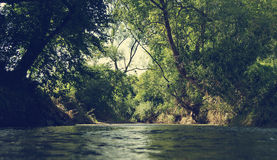зеленая зона Стоковые Фотографии RF