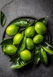 Зеленая известка лимона с свежими листьями на черной плите, предпосылке шифера Стоковое Изображение RF