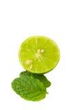 Зеленая известка сочная и мята на белой предпосылке Стоковое Фото