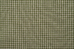 Зеленая и белая шотландка Стоковое фото RF