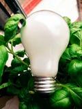 зеленая идея Стоковые Фотографии RF