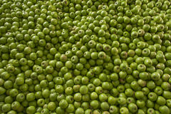 Зеленая и сочная куча яблока кузнца бабушки на местных фермерах mar Стоковые Фото