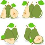 Зеленая иллюстрация груш Стоковые Фотографии RF