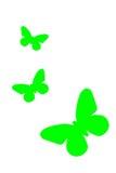 Зеленая картина бабочки изолированная на белой предпосылке Стоковое Изображение