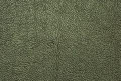 Зеленая кожаная grained картина предпосылки текстуры Стоковые Изображения RF